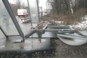 В Колпинcком районе ветер повалил остановку