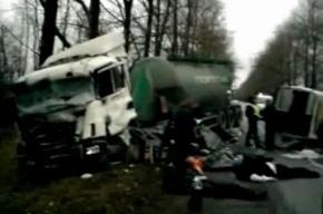 В Ленобласти погибли пассажиры нелегальной маршрутки