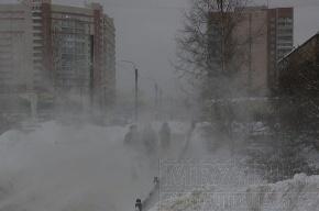 Завтра в Петербурге будет метель