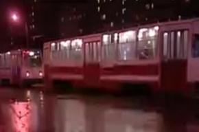 Дочь погибшей при выходе из трамвая ищет свидетелей