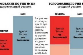 Результаты выборов: 556 самых подозрительных участков в Петербурге