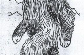 Пограничники Ингушетии задержали снежного человека