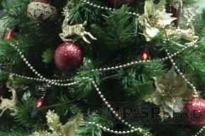В новогоднюю ночь россияне «отдыхают от людей»