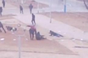 Первое видео: как полиция расстреливала безоружную толпу в Казахстане