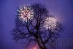 Первое фото Нового года: Фоторепортаж