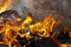 В Апраксином переулке полностью выгорел офис
