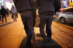 Полиция: Митрохин призывал проходить мимо металлоискателей и толкал полицейских