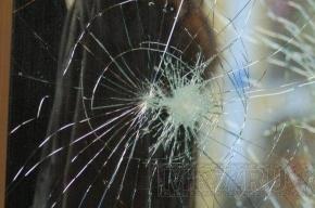 В центре Петербурга автомобили расстреливают из пневматики
