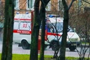 На пересечении Невского проспекта и улицы Маяковского столкнулись мусоровоз и иномарка