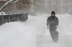МЧС предупреждает: в Петербурге завтра мокрый снег, в области – гололедица