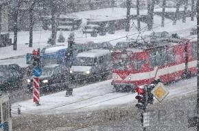 В Петербурге выпало 5 сантиметров снега