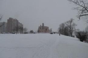 В Волгограде 180 узбеков вынуждены зимовать в чистом  поле