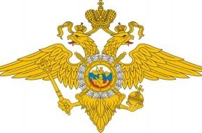 МВД: Два миллиона россиян приняли участие в рождественских богослужениях