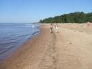 Комаровский берег будут охранять как особую территорию: Фоторепортаж