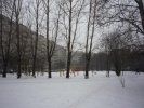 Фоторепортаж: «В Петербурге 16 скверов отдадут «под нож» реноваторов»