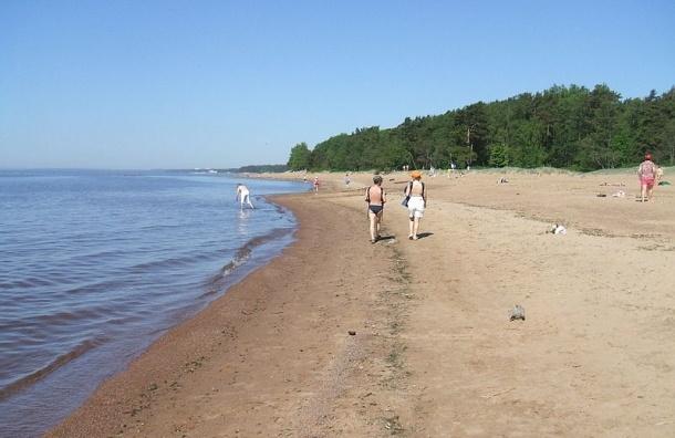 Комаровский берег будут охранять как особую территорию