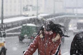 В Петербург пришла оттепель