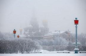 Синоптики пообещали Петербургу похолодание на выходные