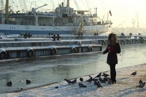 Морозы пока не уходят из Петербурга