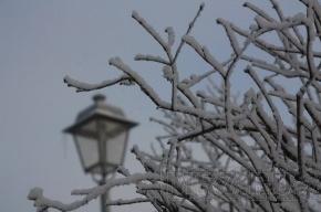 В понедельник в Петербурге будет морозно