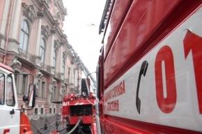 Пожар во дворце Белосельских-Белозерских потушен