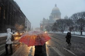 Тепло в Петербурге, метель в Ленобласти