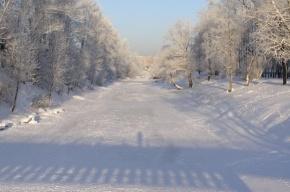 Легкий мороз продержится в Петербурге до конца следующей недели