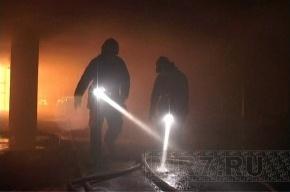 Крупный пожар на заводе в Петербурге локализован