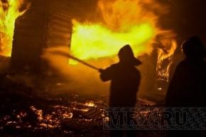 При взрыве в Волгограде пострадали десятки человек