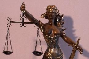 Петербуржцы приходят в суды с газовыми баллончиками, стамесками и арматурой
