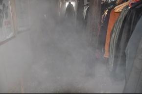 Музыканты «Терем-квартета» лишились двух бесценных баянов из-за прорыва трубы