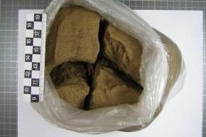Петербургские наркополицеские нашли 4 кило гашиша в кафе с гастарбайтерами