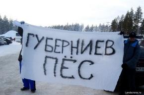 Фанаты «Зенита» ответили Губерниеву за Малафеева