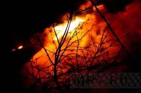 В Москве пекарня взорвалась из-за того, что газовый баллон грели паяльной лампой
