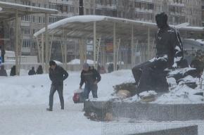 За прошедшие сутки в Петербурге от морозов пострадало 16 человек