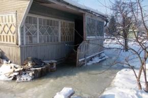 Садовые домики под Петербургом затопило загадочными химикатами