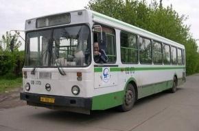 Два автобуса столкнулись на юге Петербурга