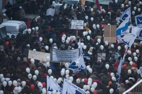 Сокуров, Девотченко и Стругацкий призвали оппозицию объединиться