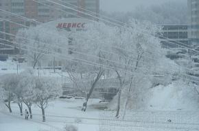В Петербурге потеплеет