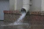 Фоторепортаж: «Дождь»