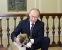 Путин набрал 63,60% голосов после обработки 99,97% протоколов: Фоторепортаж