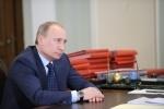 Путин - Авдеев: Фоторепортаж