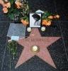 Фоторепортаж: «Перед смертью вокалист The Monkees задыхался»