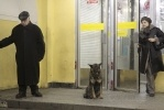 Фоторепортаж: «Метро Петербурга»