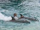 Фоторепортаж: «дельфины»