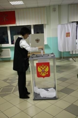 Предварительные итоги выборов в Петербурге: шквал нарушений: Фото