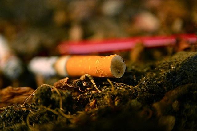 Курение: Фото
