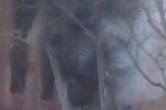 Взрыв газа убил людей под Саратовом. Кадры с места происшествия