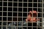Мужчина, госпитализированный в коме из отделения полиции в Гатчине, все еще не пришел в себя