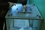 На женщину, совершившую вброс на выборах в Петербурге, завели дело
